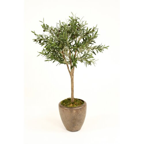 Silk Olive Topiary Tree in Planter