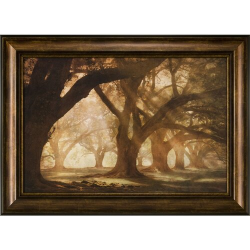 Ashton Wall Décor LLC Oak Ally Morning Light Framed Photographic Print