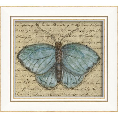 Blueprint Artwork Butterfly Framed Graphic Art