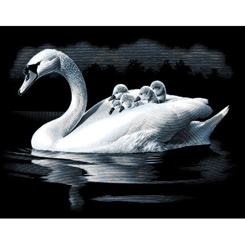 Reeves Swan and Cygnets Scraperfoil
