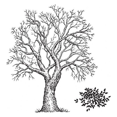 Sarasota Stamps Mounted Rubber Tree and Foliage Stamp