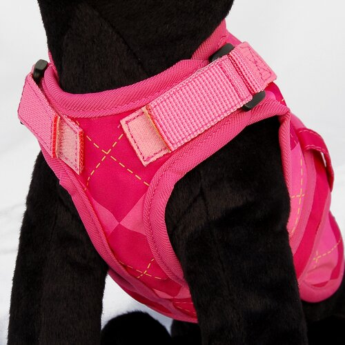 26 Bars & A Band Avant Garde Prep Dog Harness