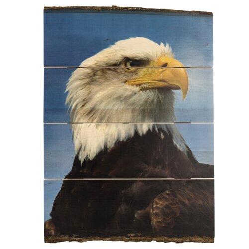 Majestic Eagle Bark Edge Panel