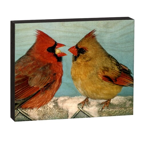 Summit Cardinals Sharing Wall Art