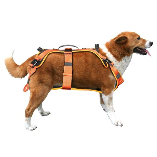 Fusion Pet Virtua Heavy Duty Dog Harness