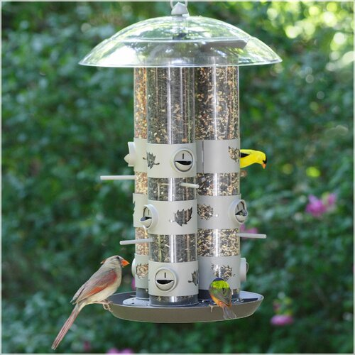 Birdscapes Triple Tube Bird Feeder Amp Reviews Wayfair