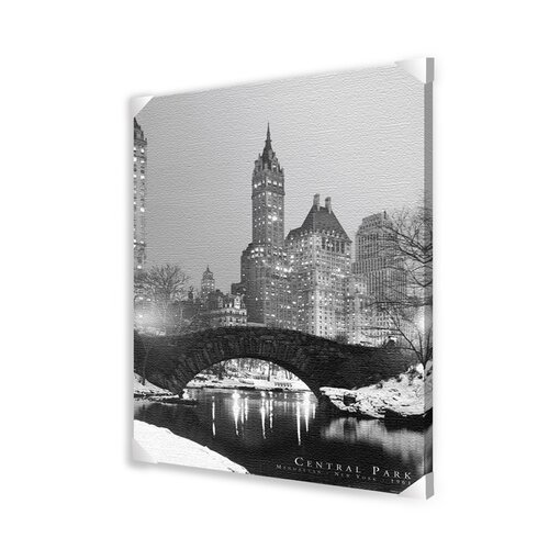 Ace Framing Central Park Photographic Print on Canvas