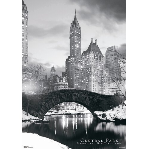 Ace Framing 3D Central Park Bridge Framed Photographic Print
