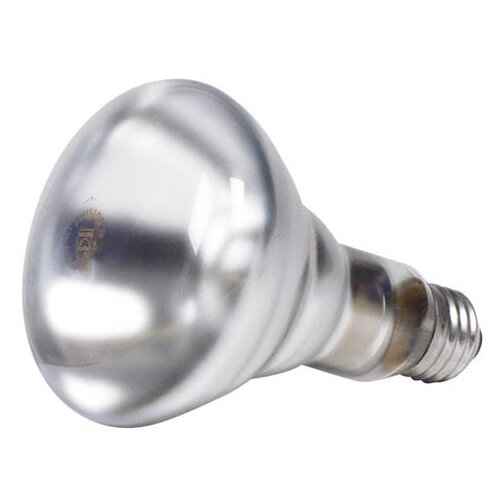 Philips Home and Healthcare Solutions DuraMax Long Life Reflector Spot Light Bulb