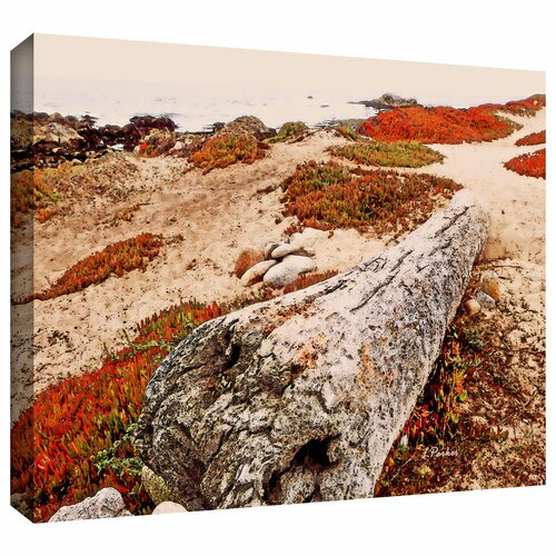 'Log on Pebble Beach' by Linda Parker Gallery Wrapped on Canvas