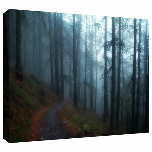 Art Wall 'Woods' by John Black Gallery-Wrapped on Canvas