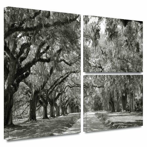 'Live Oak Avenue' by Steve Ainsworth Flag 3 Piece Gallery-Wrapped Canvas Art Set