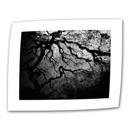 """Art Wall """"Japanese Ying and Yang Tree"""" by John Black Photographic Print on Canvas"""