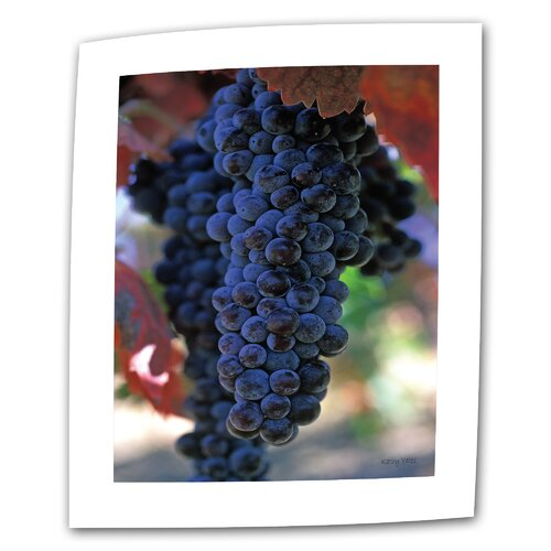 "Art Wall ""On the Vine"" by Kathy Yates Photographic Print on Canvas"
