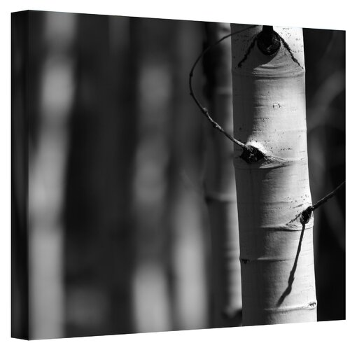 Art Wall ''A Way Out'' by Mark Ross Photographic Print on Canvas