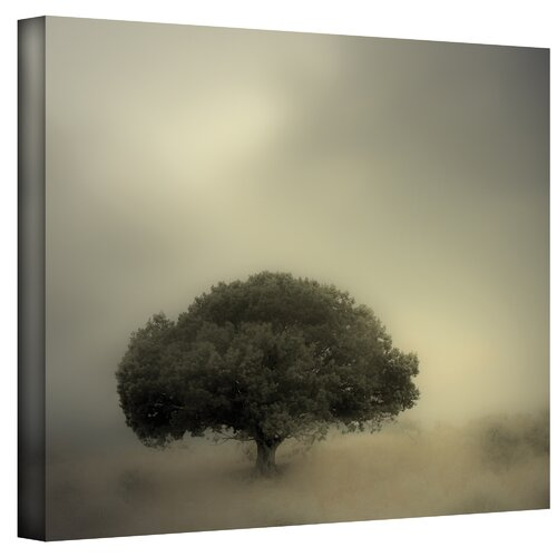 ''Room to Grow'' by Mark Ross Graphic Art on Canvas