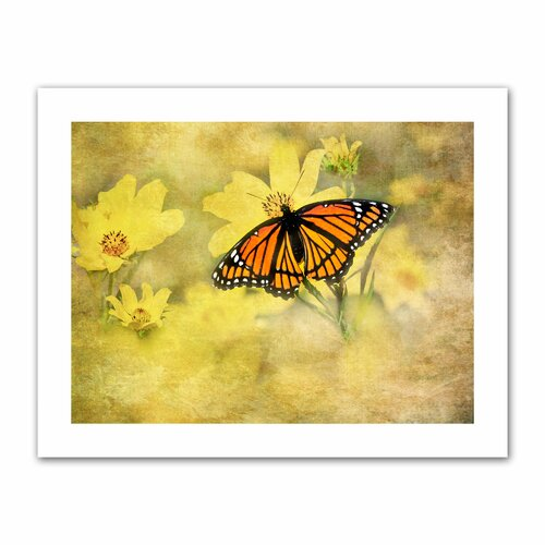 Antique Maps 'Butterfly in Yellow' by David Liam Kyle Graphic Art Canvas