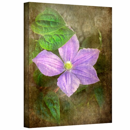 Art Wall 'Flowers in Focus II' by David Liam Kyle Photographic Print on Canvas