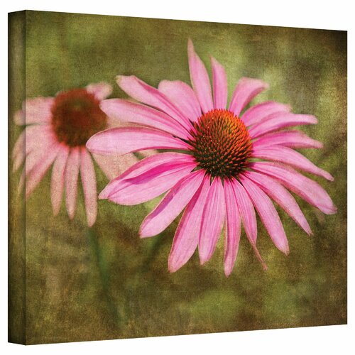 'Flowers in Focus V' by David Liam Kyle Photographic Print on Canvas