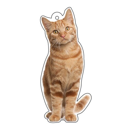 Little Gifts Cat Lover Air Freshener