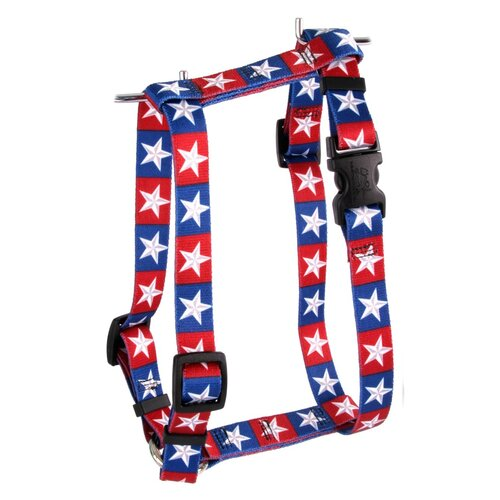 Yellow Dog Design Colonial Stars Roman Harness