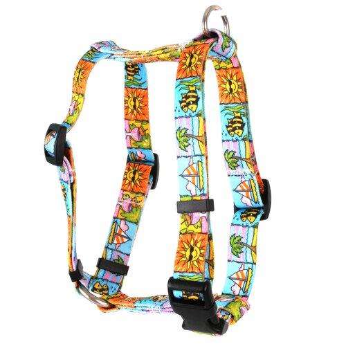 Yellow Dog Design Seaside Roman Harness