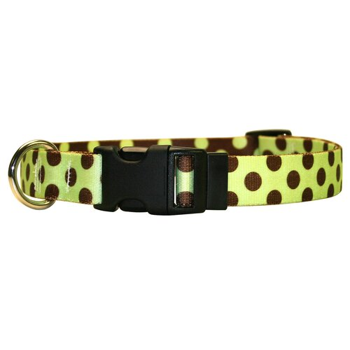 Yellow Dog Design Green and Pink Skulls Standard Collar