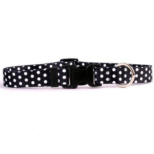 Polka Dot Standard Dog Collar