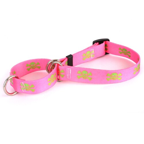 Pink/Green Skulls Martingale Collar