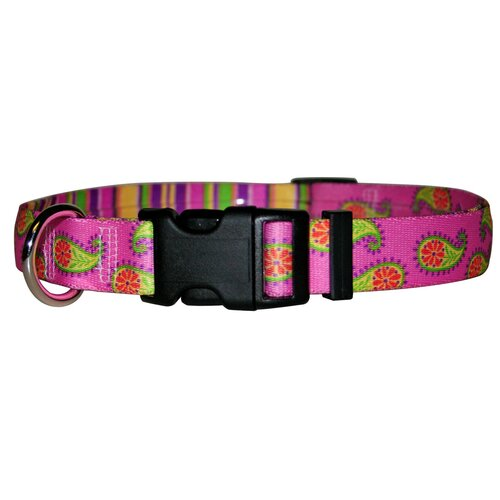 Yellow Dog Design Paisley Standard Collar