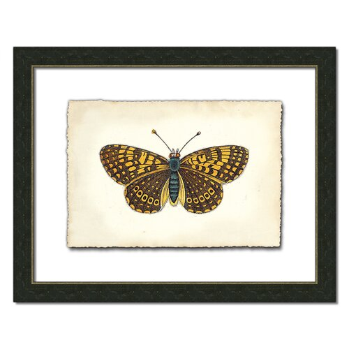 Butterfly Vlll Framed Graphic Art