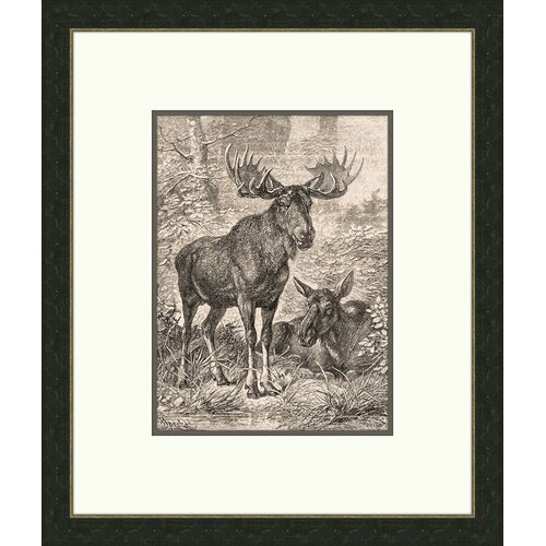 Forest Dwellers I Framed Graphic Art