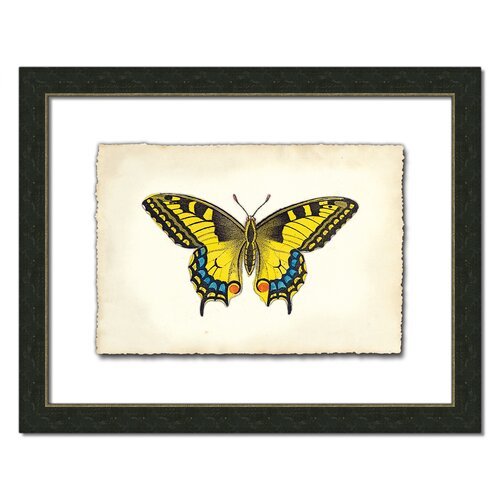Butterfly Xl Framed Graphic Art