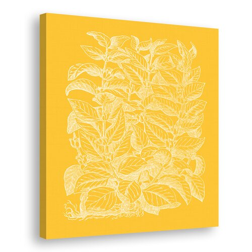 Floral Impression II Graphic Art on Canvas