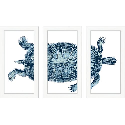 Blue Turtle 3 Piece Framed Graphic Art Set