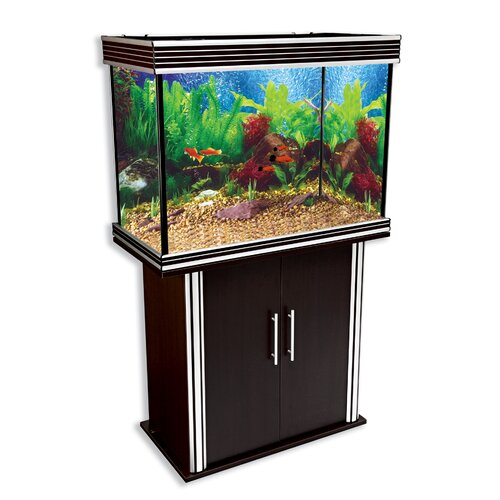 Penn Plax 49 Gallon Aquarium Tank
