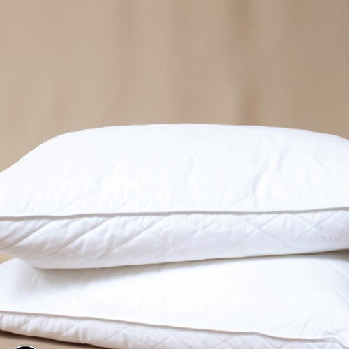 MicroLoft Gel Polyester Down Alternative Pillow (Set of 2)