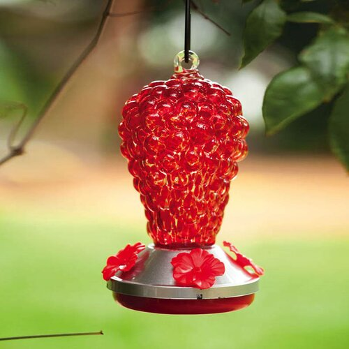 Grapes Hummingbird Feeder