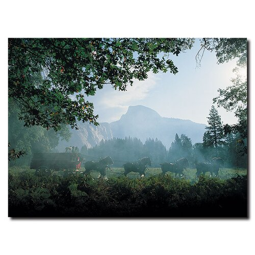 "Trademark Fine Art ""Clydesdales in the Misty Mountains"" Photographic Print on Canvas"