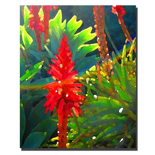 "Trademark Fine Art ""Backlit Arborescens"" by Amy Vangsgard Painting Print on Canvas"