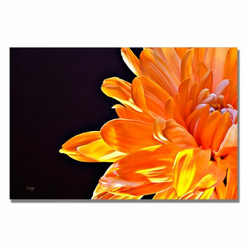 Trademark Fine Art 'Delicious' by Lois Bryan Photographic Print on Canvas