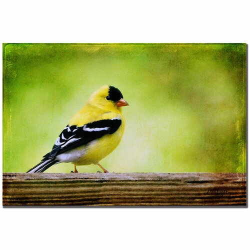Trademark Fine Art 'American Golden Finch in Spring' by Lois Bryan Photographic Print on Canvas