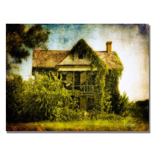 'Ivy House' by Lois Bryan Photographic Print on Canvas