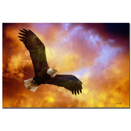 "Trademark Fine Art ""Flight of the Eagle"" by Lois Bryan Graphic Art on Canvas"