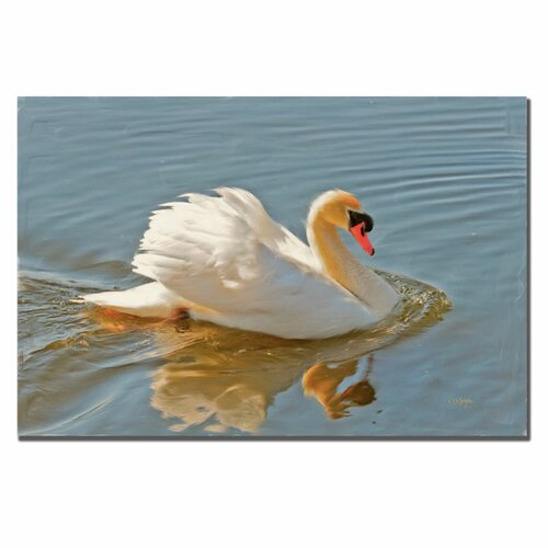 "Trademark Fine Art ""Floating Swan"" by Lois Bryan Photographic Print on Canvas"