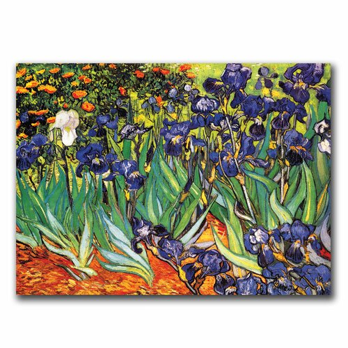 "Trademark Fine Art ""Irises at Saint-Remy"" by Vincent van Gogh Painting Print on Canvas"