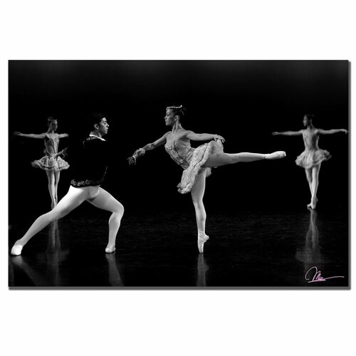 Trademark Fine Art 'Ballet III' by Martha Guerra Photographic Print on Canvas
