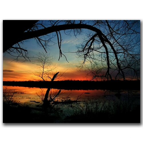Trademark Fine Art 'Luminous Essence' by CATeyes Photographic Print on Canvas
