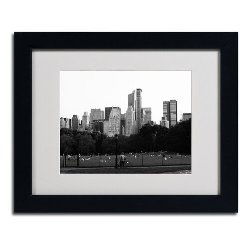 "Trademark Fine Art ""Sheep's Meadow"" by Miguel Paredes Framed Photographic Print"