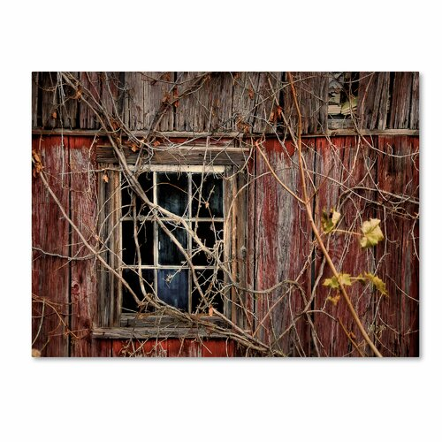 "Trademark Fine Art ""Old Barn Window"" by Lois Bryan Photographic Print on Canvas"